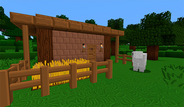 liies-texture-pack