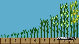 Simple-Corn-Mod-2
