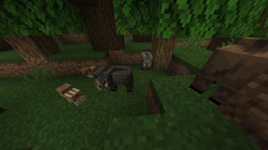 Cerdos Creature Variety