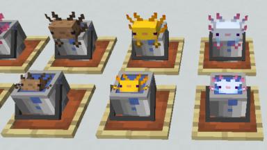 Ajolotes en cubetas Findrek's 3D Buckets